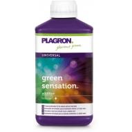 Green Sensation (Plagron)