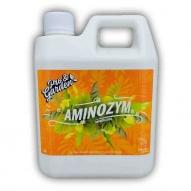 P&G-Aminozym
