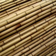 Tutores Bambu